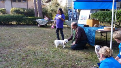 Rev. Liebmann blessing animal